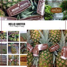 Has guardado en Bribrifruits frutas tropicales Costa Rica @bribrifruitscostarica #piñas #pineapple #pineapples #ananas #frutastropicales #dieta #nutricion #salud #costarica #caribe #puravida #instanfood #piñasdecostarica #fruterias #mercados #mercamadrid #mercabarna #mercasevilla #spain #bribrifruits #disfrutadelapiña @btfgroup_ @fundacionesportus_ @tabogacn  #Barcelona #Madrid @btfgroup_ #calidad #frescura #FreshFruits