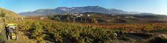 La Borgoña francesa inspirará la III Feria Histórica del Vino de Navaridas https://www.vinetur.com/2015032318669/la-borgona-francesa-inspirara-la-iii-feria-historica-del-vino-de-navaridas.html