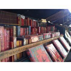 Antique book kiosk along Sienne