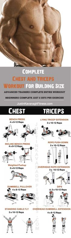Complete Chest and Triceps Workout for Building Size