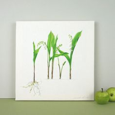 Lily-of-the-Valley Canvas Print by TheBotanicalConcept on Etsy