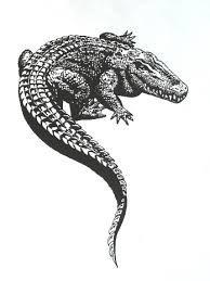 996eb3676 Tattoo Sketches, Sketch Tattoo Design, Tattoo Designs, Minimal Tattoo Design,  Tattoo Drawings, Sketch Design, Alligator Tattoo, Dope Tattoos, All Tattoos