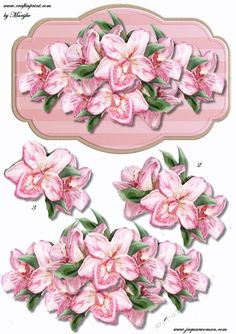 Pink Orchids panel on Craftsuprint designed by Marijke Kok - beautiful Pink ochids on elegant panel,for any occasion. - Now available for download!