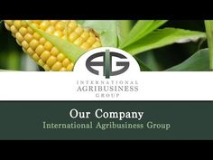 International Agribusiness Group | Livestock Market Risk
