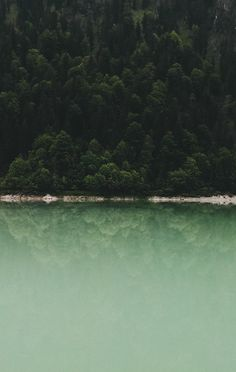 by marina w. (tumblr / flickr / instagram)
