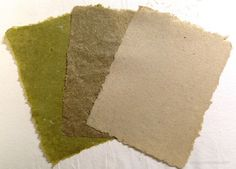Making Paper from Invasive Plants