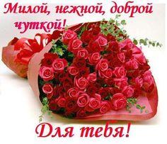 С Днем рождения цветы 17 - clipartis Jimdo-Page! Скачать ...