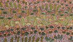 Kindy Kemarre Ross Bush Medicine Plants Acrylic on linen, 51 x 30 cm Artists of Ampilatwatja Eastern Desert, NT. For more Aboriginal art visit us at www.mccullochandmcculloch.com.au #aboriginalart #australianart #contemporaryart