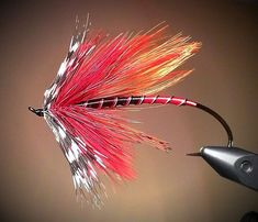 Killer steelhead fly by Rosso Fuoco. Nice work! For more fly fishing info follow and subscribe www.theflyreelguide.com. Also check out the original pinners site and support