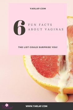 "Listen: vaginas are cool. Half of the population on earth has one. With 1 in 3 women in the USA suffering from urinary incontinence, we want to break open ""awkward"" conversations. We should talk more openly about the health of our lady parts, vaginal care, women's health, and women's care. There are so many cool facts about vaginas, we made a list! How many of them did you know? Click to read the interesting facts! #womenshealth #womenscare #womencare Pregnancy Care, Pregnancy Workout, Pelvic Floor Exercises, Lady Parts, Urinary Incontinence, Floor Workouts, Women's Health, Our Lady, Interesting Facts"