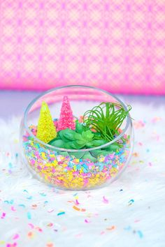 Add a pop of color and fun to any space with a quick, easy, and versatile confetti succulent terrarium. Confetti Bars, Diy Confetti, Confetti Ideas, Trash To Couture, Rock Crafts, Diy And Crafts, Crafts For Kids, Decoration Christmas, Holiday Decorations
