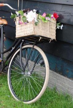 Dressed up bike basket.
