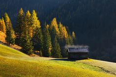 In the valley - Photos from autumn Dolomites . East Of Eden, Travel Photographer, Art Photography, Beautiful Places, Around The Worlds, Country Roads, Italy, Mountains, Landscape