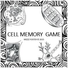 In da club membranes transport cell membrane ap biology and cell memory matching game in black white fandeluxe Choice Image