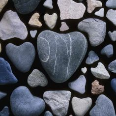 How to Identify Valuable Rocks.Assortment of heart shaped rocks Minerals And Gemstones, Rocks And Minerals, Raw Gemstones, Rock Identification Pictures, How To Make Rocks, How To Identify Rocks, How To Polish Rocks, Geode Rocks, Heart Shaped Rocks