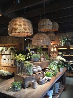Height variations in displays create more visibility. Height variations in displays create more visibility. Garden Shop, Home And Garden, Flower Shop Interiors, Garden Center Displays, Flower Shop Design, Design Shop, Deco Champetre, Coffee Shop, Sweet Home