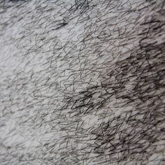 "Roanna Wells, stitch detail of ""eclipse"", roannawells.co.uk"