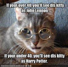 Music Monday Humor | John Lennon Vs Harry Potter    Originally posted by jokeoftheday.com via +Emma McDaniel    #musicmonday  #musichumormonday  #thebeatles  #johnlennon  #caturday  #funnycats  #mememonday  #memes