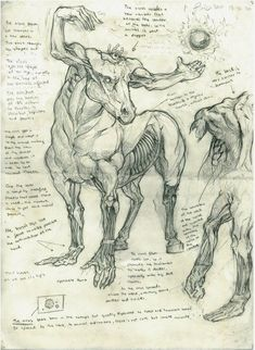 Virus Horse >>> Disgust embodied in one cursed sketch Mythical Creatures Art, Mythological Creatures, Magical Creatures, Monster Design, Monster Art, Creature Concept Art, Creature Design, Arte Horror, Horror Art
