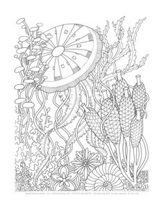 Adult Coloring Pages  -Aquatic Bouquets-  Set of 8 via Etsy