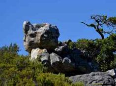 The Watchers Mount Rushmore, Garden Sculpture, Mountains, Water, Travel, Outdoor, Gripe Water, Outdoors, Viajes