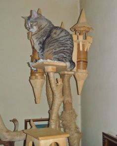 DomusfeliS - special playzones for cats - Unique pieces for unique cats, sculptures for cats, untreatedprecius wood: plum, apricot, poplar, birch, bamboo and piracanta. #catcastle #castlecat #cattower #cattree #catcondo #cattoy #catenclosure #petdesign #amazingcat scratching #catscratch forniture #catfrendyhouse #cataccessories Plum Apricot, Cat Castle, Cat Enclosure, Cat Condo, Unique Cats, Cat Accessories, Cat Scratching, Cat Tree, Animal Design