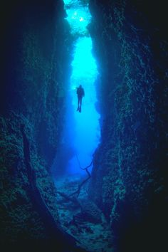 """breezingby: """"wowtastic-nature: """"💙 Adventure alert on by Peter Pinnock, Durban, South Africa ☀ NIKON """" """"Inner Space"""" """" Underwater Caves, Underwater Photos, Underwater World, Underwater Photography, Scuba Diving Quotes, Scuba Diving Equipment, Cave Diving, Deep Blue Sea, All Nature"""
