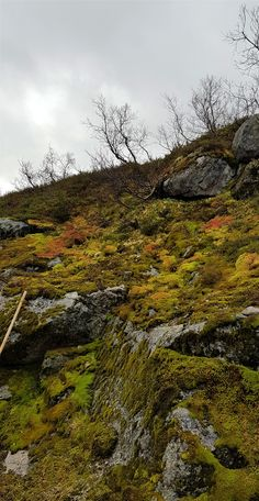 autumn  color Norway, Country Roads, Autumn, Mountains, Nature, Photos, Travel, Color, Landscapes