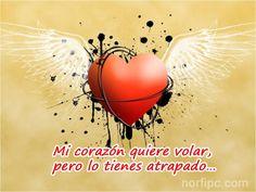 Mi corazón quiere volar, pero lo tienes atrapado…