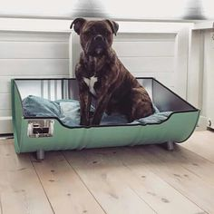 Car Furniture, Barrel Furniture, Pet Beds, Dog Bed, Dog Rooms, Animal Projects, Animal Decor, Easy Home Decor, Dog Houses