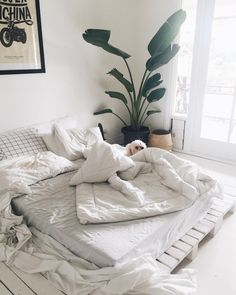 Zero Waste Bed Inspiration | Palette Furniture | white bedding | white palette | puppy