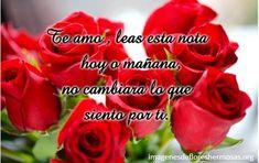 Imagenes De Rosas Rojas Con Frases De Amor Con Movimeinto Flores