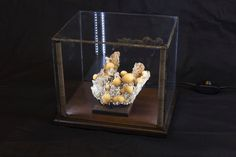 Lighted Display Case - 10x8x8