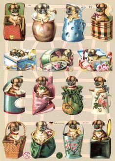 http://www.matkukuus.fi/kauppa/kiiltokuva_koiranpennut_ef-7342_b10