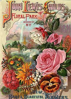 """John Lewis Childs, Floral Park, Queens Co., N.Y. 1891 Seed Catalog - """"new, rare and beautiful flowers"""""""