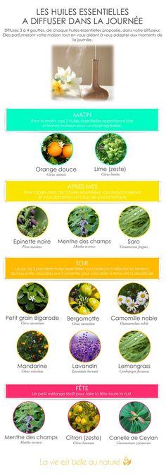 huiles-essentielles-a-diffuser-dans-la-journee. Naturopathy, Best Essential Oils, Diffuser Blends, Alternative Health, Smell Good, Natural Medicine, Better Life, Healthy Tips, Diy Beauty