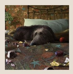 Artist Stephen Hanson New Release-Breakfast In Bed-Art Print For Sale.View And Buy Stephen Hansons New Art Prints Online Art Prints Online, Charles Darwin, Dog Illustration, Breakfast In Bed, Dog Paintings, Whimsical Art, Dog Art, Beautiful Dogs, Animal Drawings