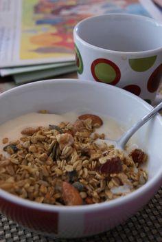 gluten free granola - great gluten free, diary free, sugar free blog