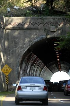 Missionary Ridge Tunnel The Beautiful South, Chattanooga Tennessee, Southern Style, The Rock, Cleveland, Pride, Memories, Spaces, History
