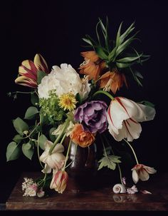 1726 Photography of Floral Still-Lifes That Recall Old Masters Paintings - Sharon Core Art Floral, Deco Floral, Floral Design, Floral Photography, Botanical Art, Flower Designs, Flower Art, Still Life, Planting Flowers