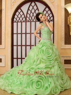 Beading Rolling Flowers One Shoulder A-Line Organza Chapel Train Spring Green Quinceanera Dress  http://www.fashionos.com  http://www.facebook.com/quinceaneradress.fashionos.us  Look like a fairy in this gorgeous wedding dress! The fitted one shoulder bodice is gorgeous with beadings,little hand made flowers decorate the single strap add more interesting for this dress. Full skirt is perfectly set off with big wonderful rosette with a gorgeous chapel train and lace-up tie back for great fit.