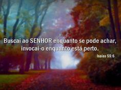 Isaias-55-6