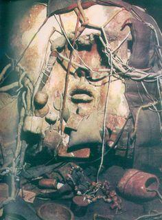 jan kucz, curriculum vitae, 1981
