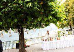 tree decor and bar