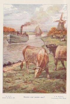 Cows with coats on? Schoolplate Cornelis Jetses