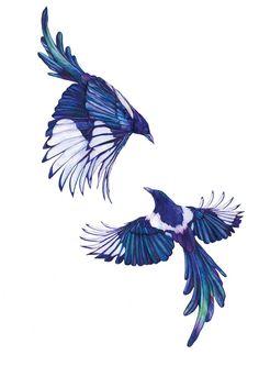 Blackbird Elster elstern - Blue birds - maybe for a Tattoo stencil - Animal Pet artwork bird birds tattoostencil Illustration art sketchbook Magpie Tattoo, Bird Drawings, Tattoo Drawings, Art And Illustration, Borboleta Tattoo, Vogel Tattoo, 1 Tattoo, Tattoo Bird, Christian Art