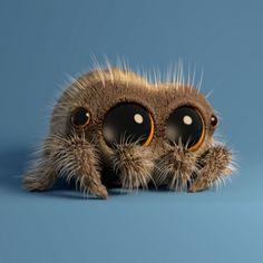 Lucas the spider....so cute!