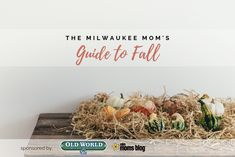 From pumpkin patches to apple orchards, fall recipes to festivals. This is your go-to guide to enjoy Milwaukee Fall with the family! Fall Is Here, Try Something New, Pumpkin Spice Latte, Fall Family, Happy Fall, Fall 2018, Fall Recipes, Milwaukee, Old World