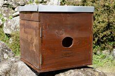 Building an owl box - Corujas Blog