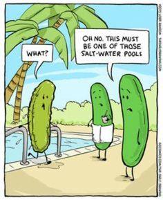 The Daily Drawing Science Cartoons, Science Humor, Funny Cartoons, Funny Comics, You Make Me Laugh, Laugh Out Loud, Biology Jokes, Food Jokes, Vegan Humor